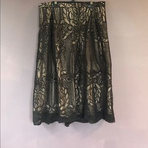 Lace Francesca's Brand Skirt